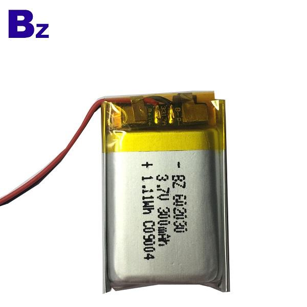 리튬 폴리머 배터리